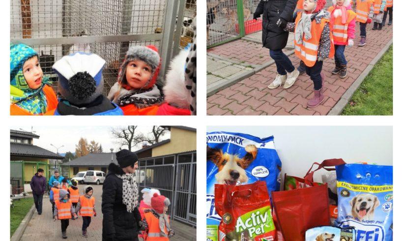 Dzieci odwiedzają Schronisko!